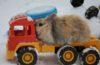 Broken down bunny being towed