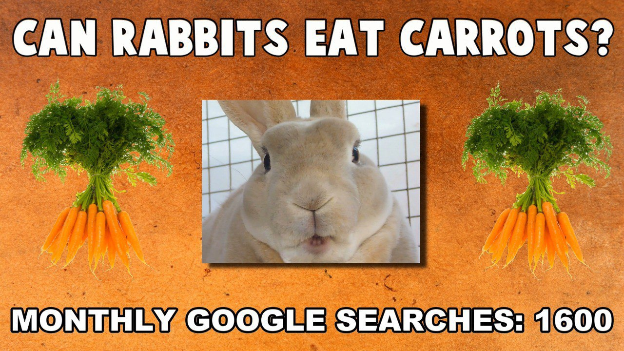Can rabbits eat carrots?